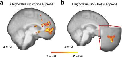 Neuroscientists discover way to increase product value without making changes to it