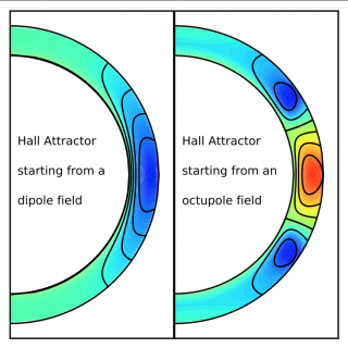 Neutron star magnetic fields: Not so turbulent, after all?
