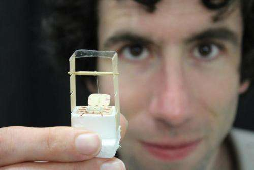 New material puts a twist in light