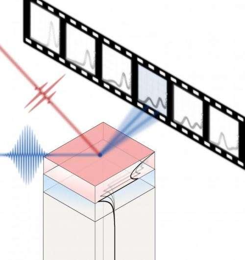 New model clarifies photoexcited thin-film lattice dynamics