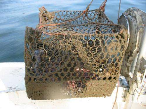 NOAA's Marine Debris Program reports on the national issue of derelict fishing traps