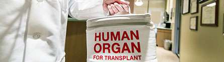 Organ donation – do we opt-in or opt-out?
