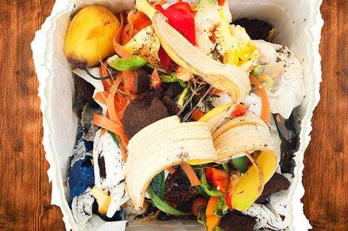 Our food waste is our wealth