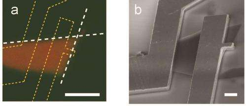 Piezoelectricity in a 2-D semiconductor