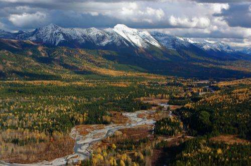 Protecting and connecting the Flathead National Forest