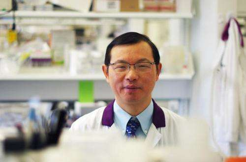 Protein in plasma may one day change transfusions