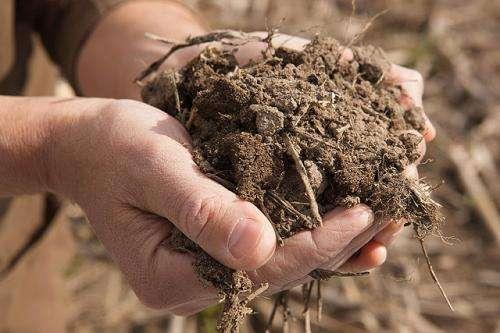 Reducir el uso de fertilizantes con una prueba de suelo más precisa