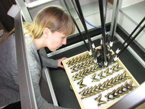 Scanning robot helps put insect collection online