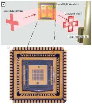 Single-pixel 'multiplex' captures elusive terahertz images