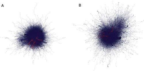 Anti-protest law changes Twitter users' behavior, but not network structure