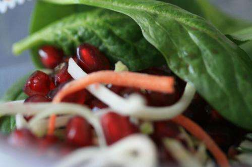 Spinach, apples increase important molecule for cardiovascular and cognitive health