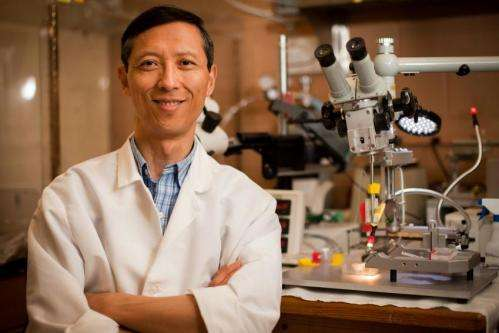 Startup commercializing innovation to reduce neurotoxin that damages nerve cells, triggers pain