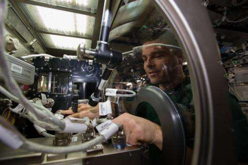 Station Astronaut Sets Up Capillary Channel Flow Experiment