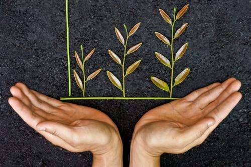 Style over substance: sustainability reporting falling short