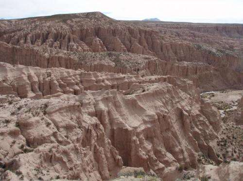 Taking the pulse of mountain formation in the Andes