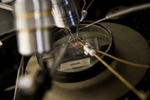 Tiny transistors for extreme environs