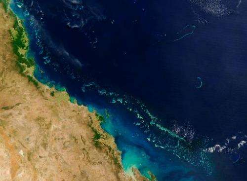 UNESCO has condemned a decision to allow the dumping of dredge waste in Great Barrier Reef waters and recommended the Australian