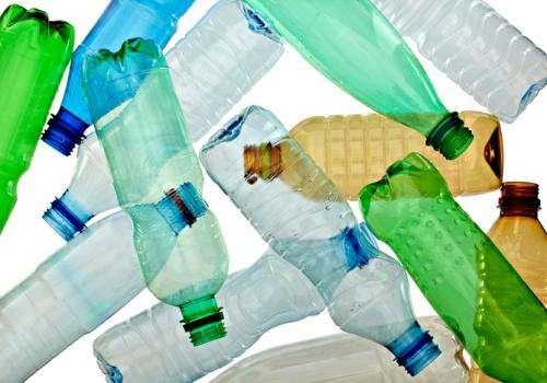 What that 'BPA-free' label isn't telling you
