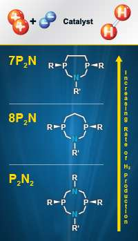 When Less Is More: Fewer Proton Relays Improve Catalytic Rates
