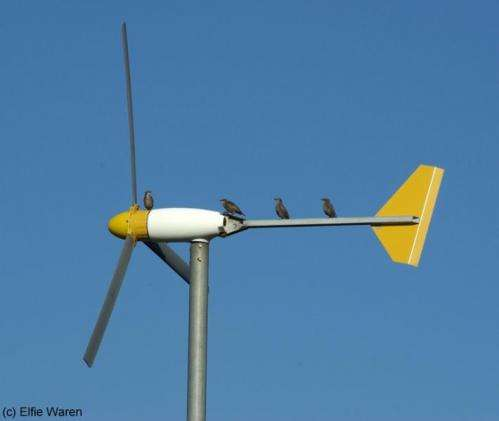 Wind turbine warning for wildlife