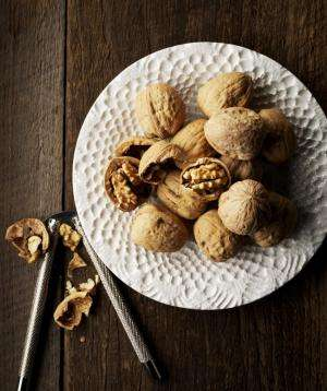 Animal study reveals potential brain-health benefits of a walnut-enriched diet