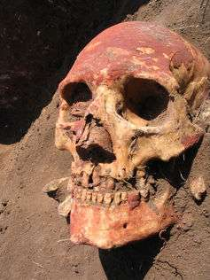Ancient DNA reveals how Europeans developed light skin and lactose tolerance
