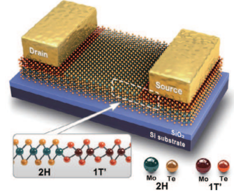 A new technique for making 2D transistors from dual-phase TMD crystals