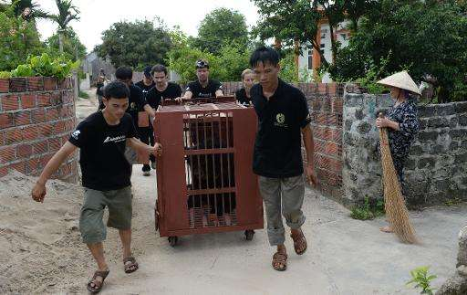 Animal protection group Animals Asia staff handle a cage with a rescued moon bear, at a private bear farm which was targeted by