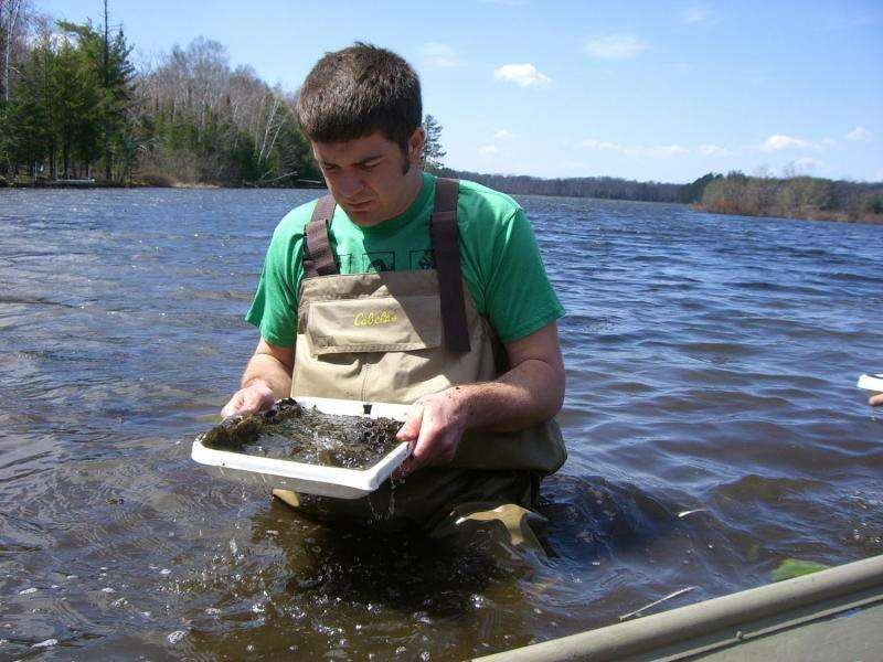 Applying research agendas to sport fishing