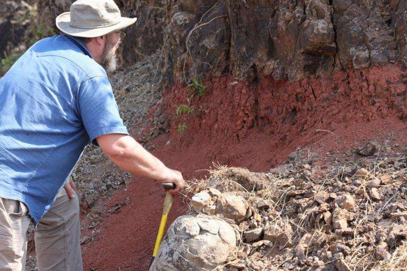 Asteroid impact, volcanism were one-two punch for dinosaurs