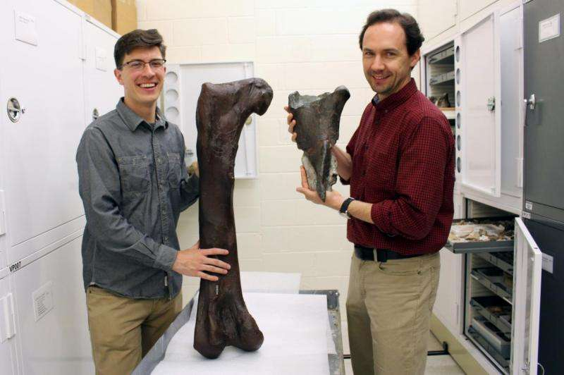 Burke Museum paleontologists discover the first dinosaur fossil in Washington state
