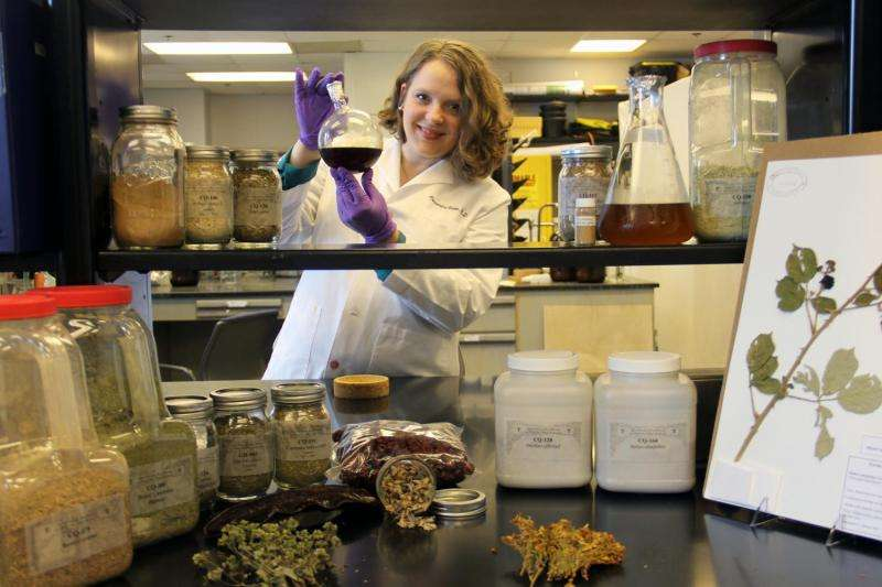 Chestnut leaves yield extract that disarms deadly staph bacteria