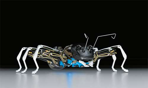 Festo has BionicANTs communicating by the rules for tasks