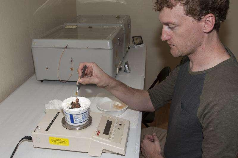 First hatch of critically endangered species