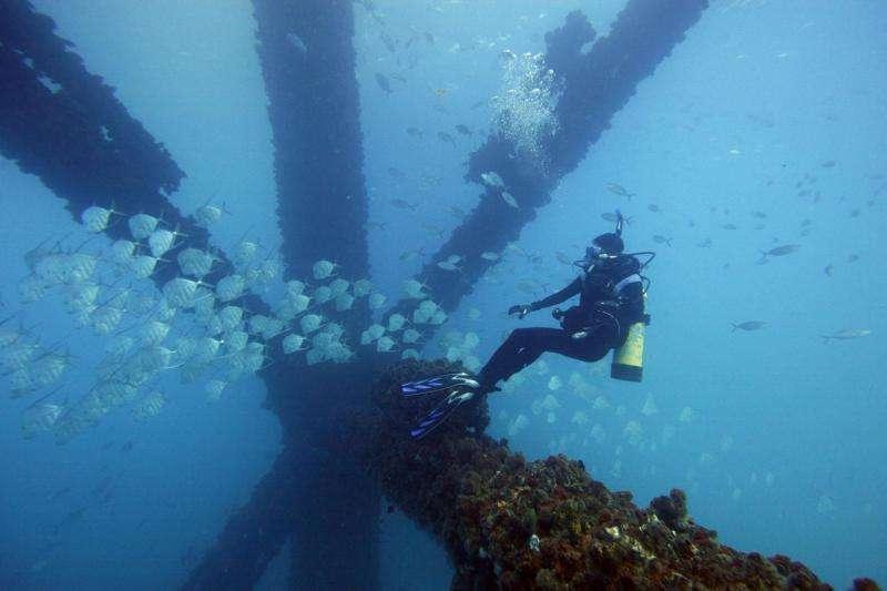 Fish skin provides invisibility in open ocean