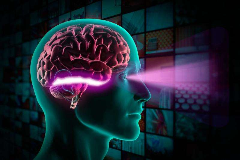 How the brain recognizes objects