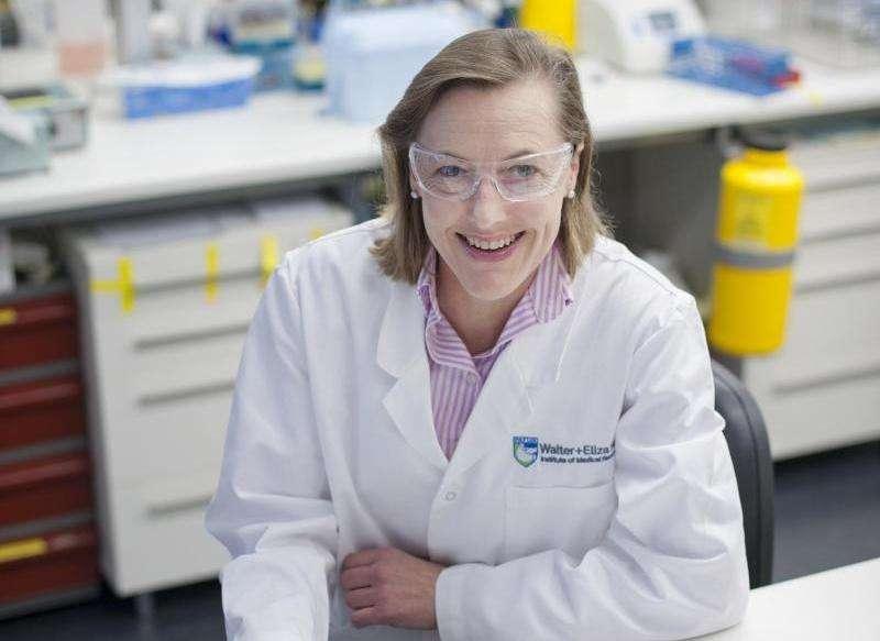 Immune cells make appendix 'silent hero' of digestive health