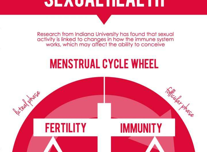 Indiana University study: Sexual activity causes immune system changes that increase chances of conception
