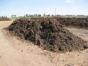 Mooving manure beyond drug-resistant bacteria
