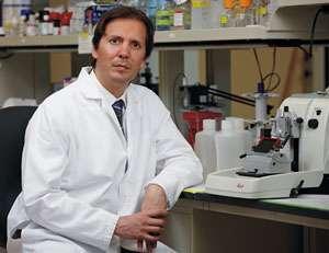 New combination treatment effective against melanoma skin
