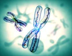 New research finds new link between telomere length and lung disease