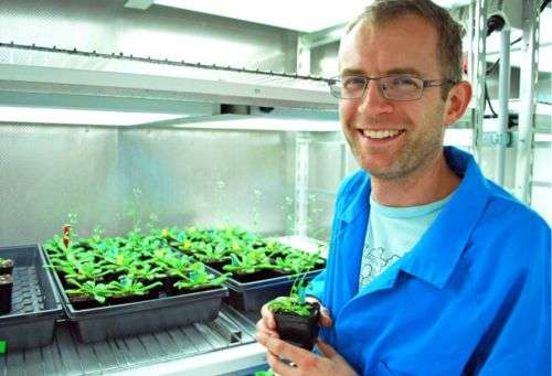 Plant growth boosted by 400 million year old communication system