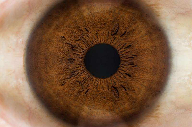 Regenerative medicine speeds healing of eye tissue following surgery