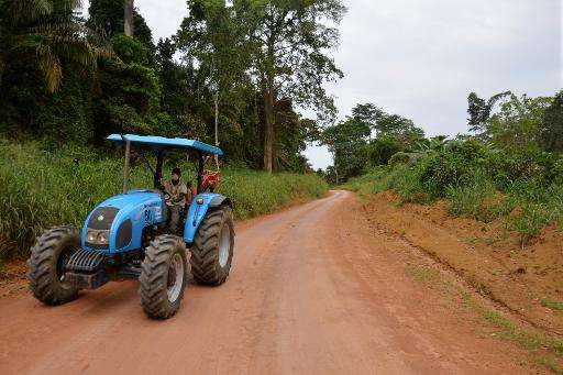 Rubber plantation worker rides a tractor along a jungle road, at the end of his working day in Batouri