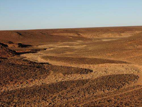 Saharan 'carpet of tools' is earliest known man-made landscape