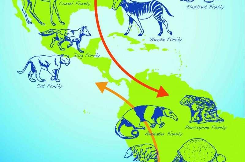 Smithsonian's Panama debate fueled by zircon dating
