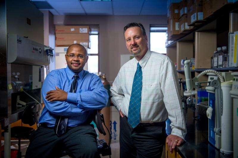 Training pig skin cells for neural development