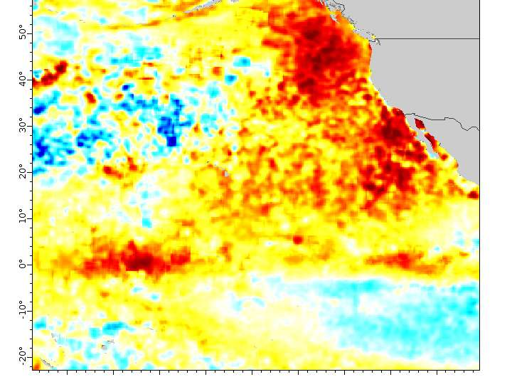 'Warm blob' in Pacific Ocean linked to weird weather across the US
