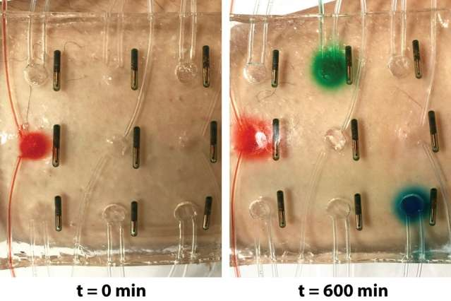 """Water-based """"Band-Aid"""" senses temperature, lights up, and delivers medicine to the skin"""