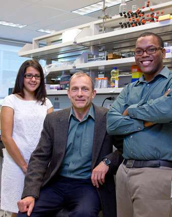 Study examines new method for diagnosing Alzheimer's disease